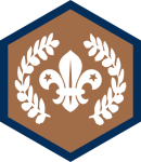 custom-themes-badges-beavers-chief_scout_award_bronze_beaver_2016