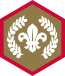 custom-themes-badges-scouts-chief_scout_award_gold_scouts